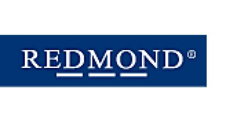 Koszula Redmond 150110_11 niebieski Royal Collection  WrEjU
